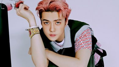 Photo of Korean pop artist Sehun turns into shareholder in SeolHaeOne Prince