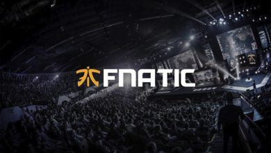 Photo of Fnatic Broadcasts the Appointment of New Chairman, Lucien Boyer – European Gaming Business Information