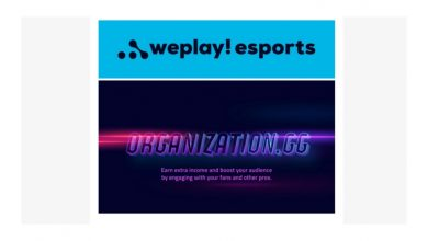 Photo of WePlay Esports invests in Group.GG, a platform which helps professional players and streamers to spice up their earnings – European Gaming Trade Information