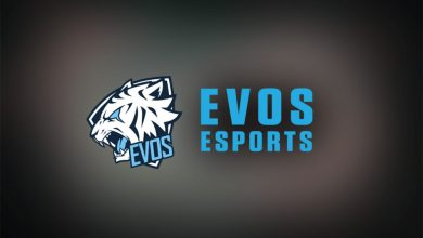 Photo of EVOS Esports Raises US$12 Million In Sequence B Funding Spherical – European Gaming Trade Information
