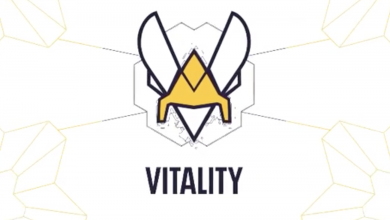 Photo of Group Vitality commences push into Indian market