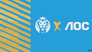 Photo of MAD Lions enters into partnership with AOC