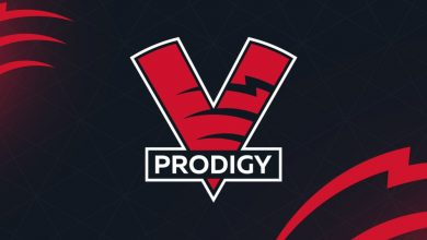 Photo of Virtus.professional second Dota 2 roster – European Gaming Business Information