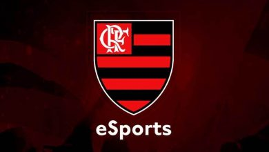 Photo of Flamengo Esports agrees Free Hearth partnership with TRT Gaming