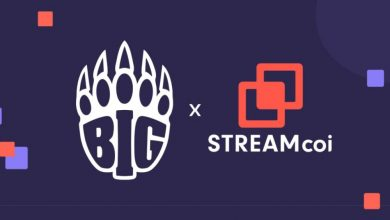 Photo of BIG Clan companions with Streamcoi to monetise and develop its reside streaming enterprise – European Gaming Business Information