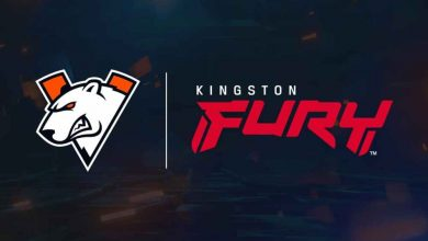 Photo of Kingston FURY and Virtus.professional grew to become companions – European Gaming Trade Information