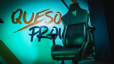 Photo of Razer named Workforce Queso gaming chair companion