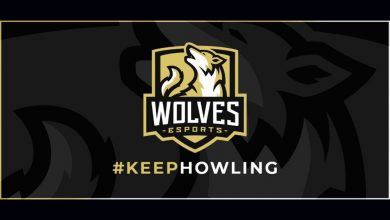 Photo of Wolves Esports Groups Up with GR Racing – European Gaming Business Information