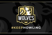 Photo of Wolves Esports Enter King Professional League Following Takeover – European Gaming Trade Information